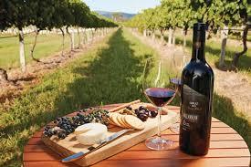 Winery in the Spotlight – Barossa Valley