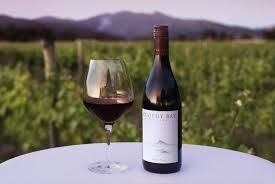 Festive Red Wine - Pinot Noir